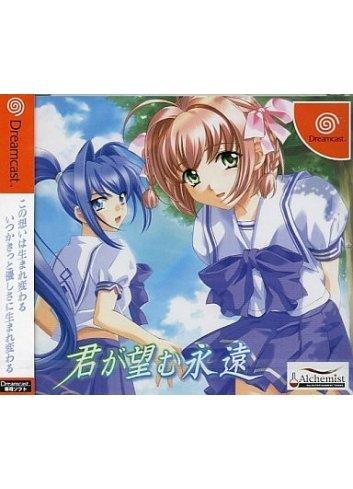 Kimi ga Nozomu Eien (Limited Edition)