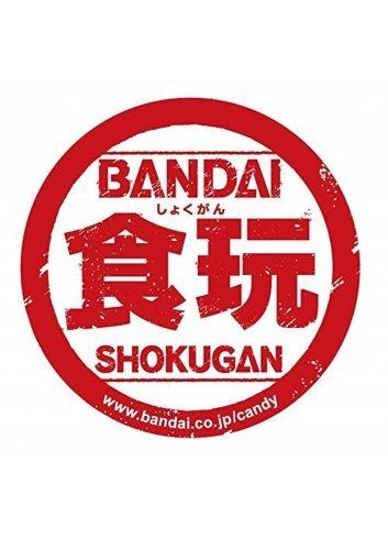 Kamen Rider Shikishi ART Special (Box 10 cards) - Bandai