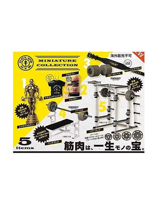 Gold's Gym Miniature Collection Box (Box / 12 pieces) Gold's Gym Miniature Collection Box (Box / 12 pieces)